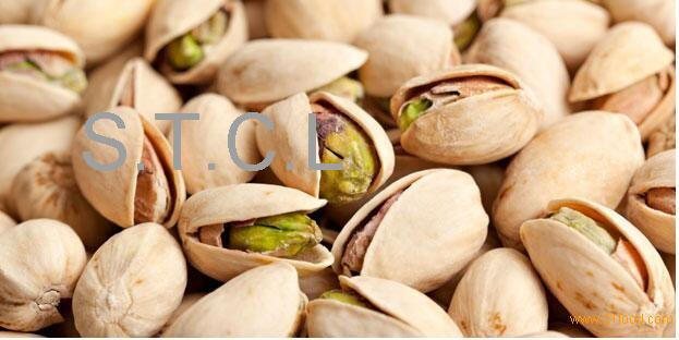 high quality salted and unsalted pistachio nuts