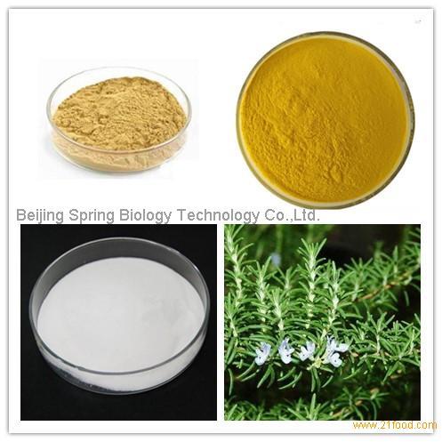 Rosemary Extract Ursolic Acid , Carnosic Acid , Rosmarinic Acid