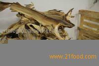 Dry Sea Cucumber (White Teat Fish )