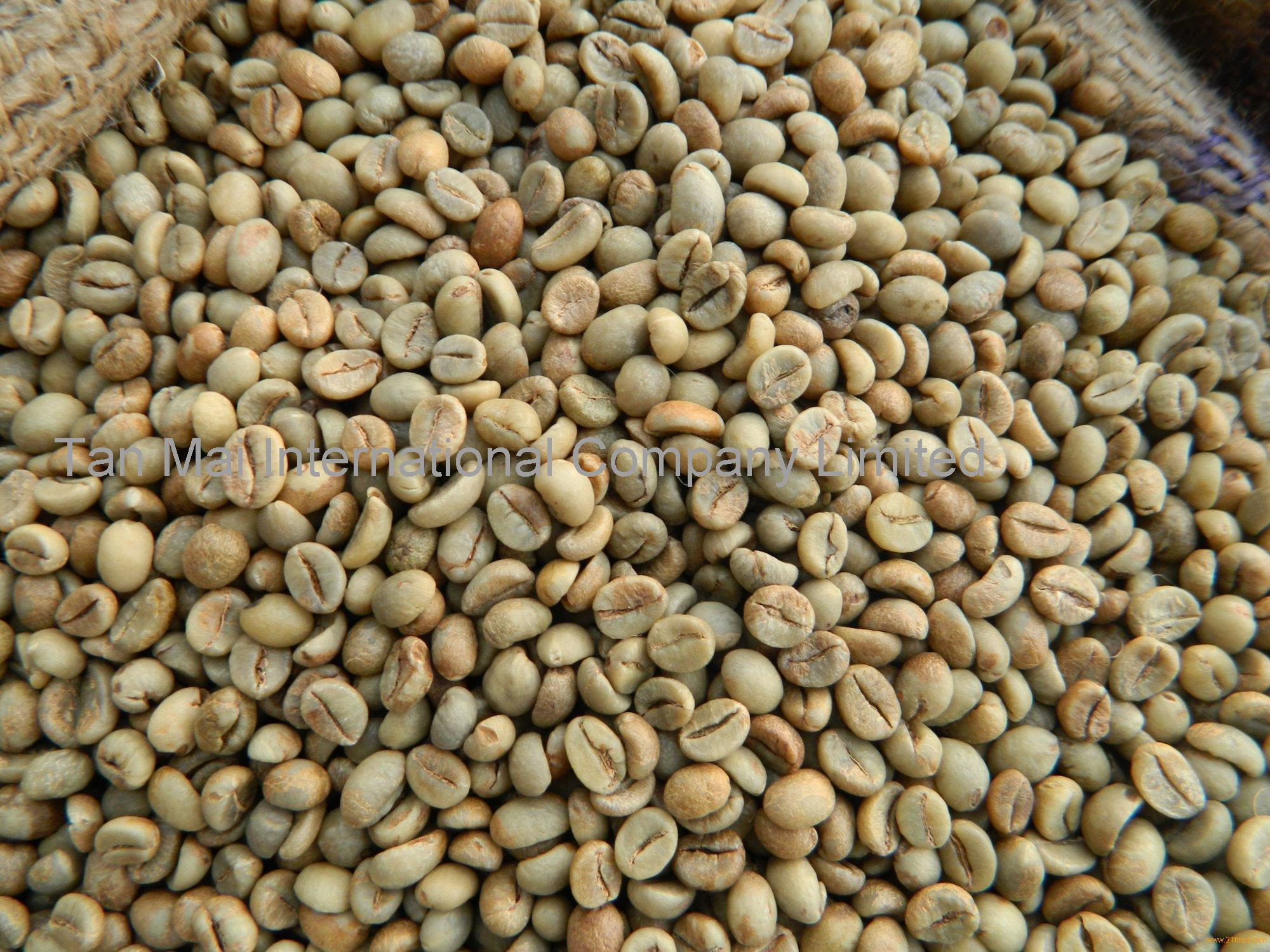 Vietnam robusta green coffee beans products,Vietnam Vietnam robusta green coffee beans supplier2000 x 1500 jpeg 487kB