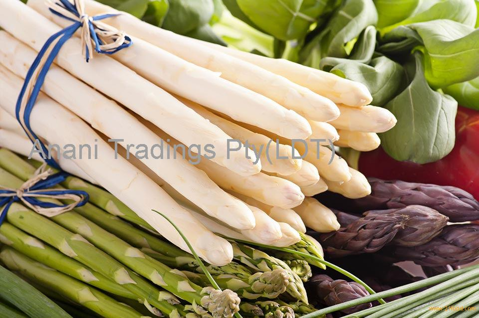 Freeze Dried white asparagus healthy vegetable wholesale