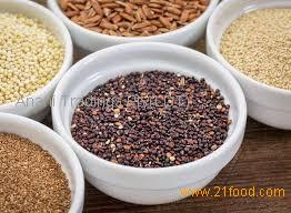 High quality common brown teff grain from the best source