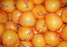 Fresh Grapefruits ( pomelo )
