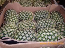 FRESH QUEEN PINEAPPLE _ GOOD QUALITY