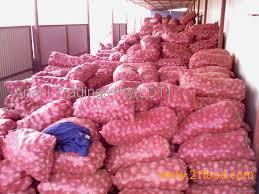 yellow and red onion Suppliers