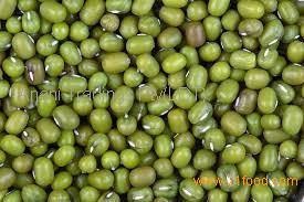 Grade A green mung beans