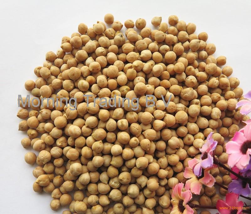 Kabuli Chana Plant Good quality Ka...