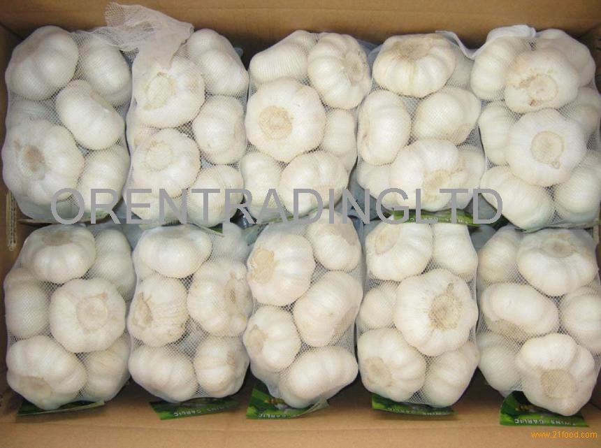 High Quality Garlic - new crop, hot sales