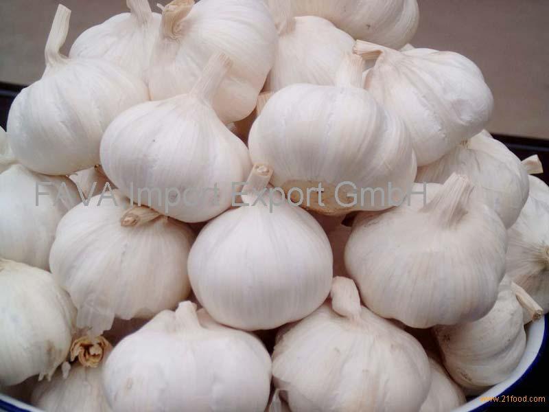 Fresh White Pure Garlic