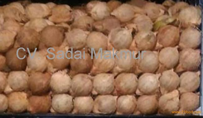 Fresh Matured Coconuts