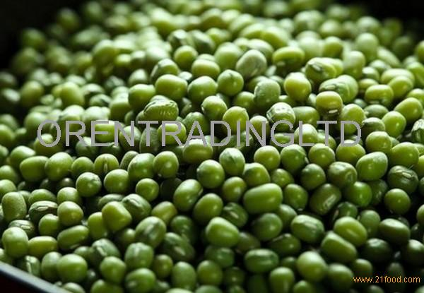 High Quality Green mung beans
