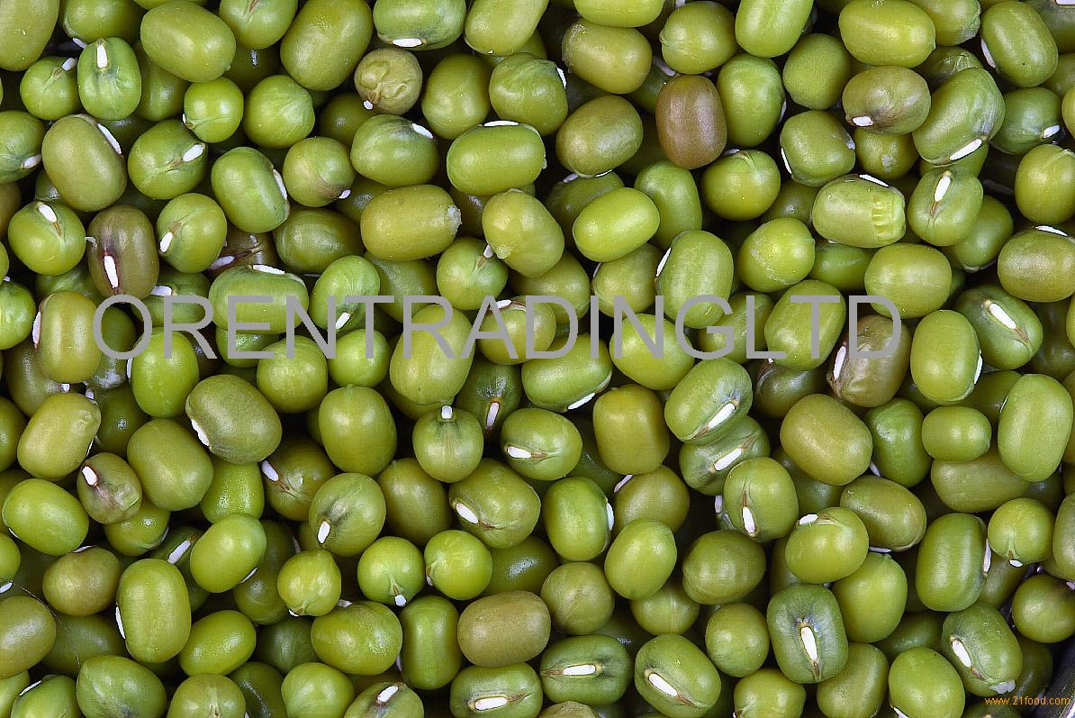 Size 2.5mm-5.0mm Green Mung Bean 2017
