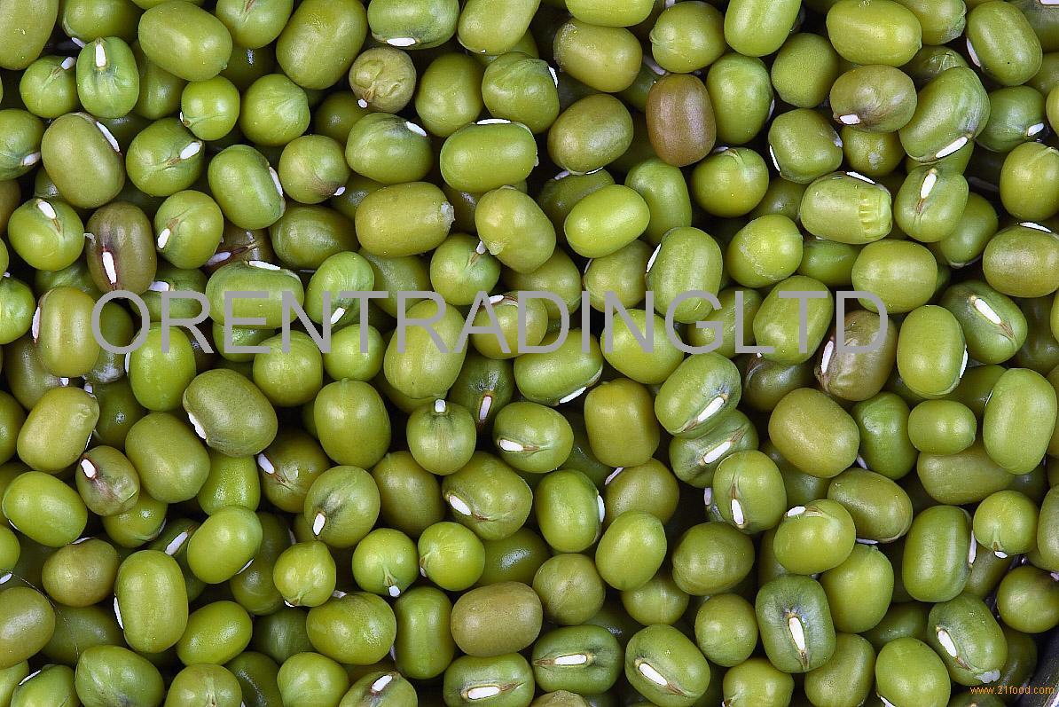 Size 2.5mm-5.0mm Green Mung Bean 2017