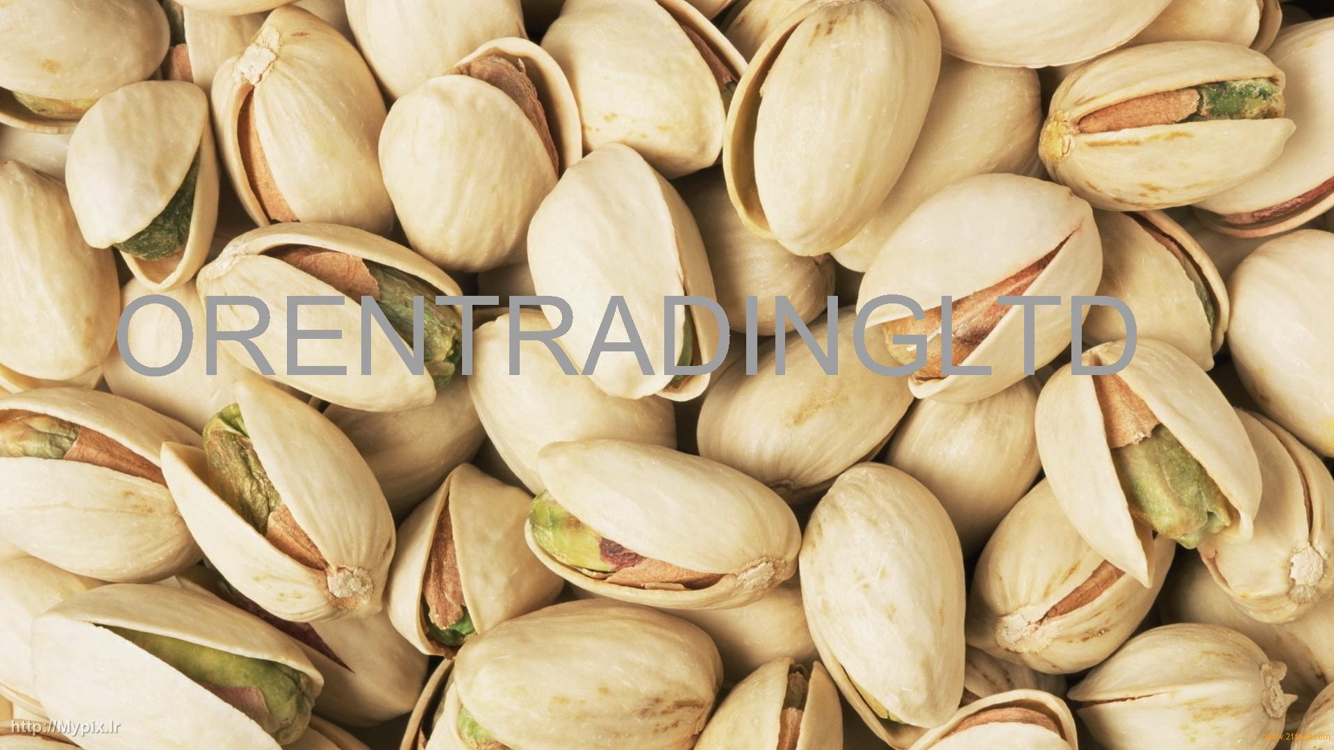 Premium Quality Pistachio Nuts