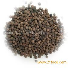 Vetch Seed For animal Feed