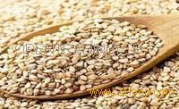 Purity Sesame Seeds