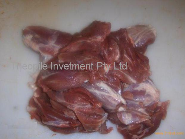 Frozen Pork Meat, Frozen Pig