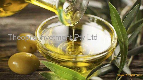 Virgin Olive Oil, Refined Olive Oil