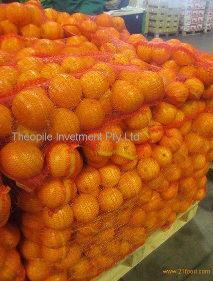 Fresh Citrus Fruits, Juicy Oranges, Navel, Valencia Oranges