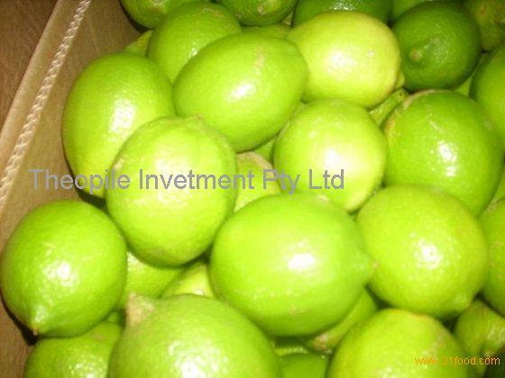 Fresh Eureka Lemon, Adalia Lemon, Verna Lemon