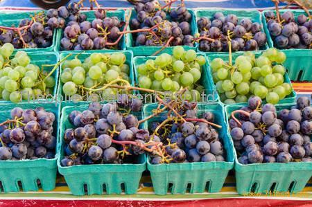 Fresh Grapes, Seedless Grapes, Grapes , Seedless Grapes, Grapes with Seeds, Green Grapes, Red Grapes