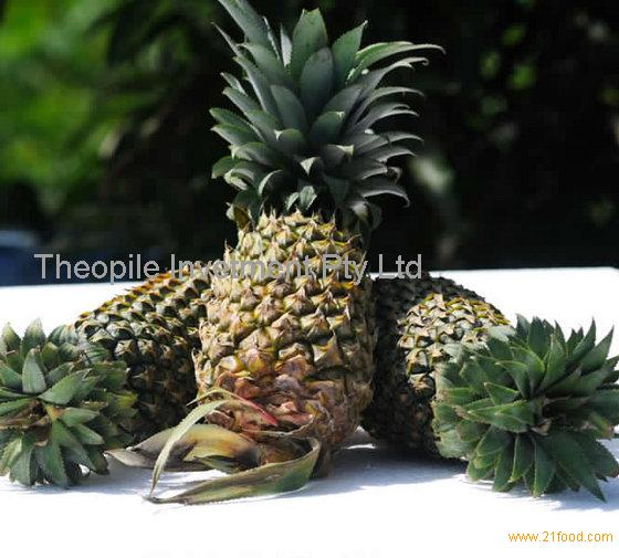 Fresh Pineapples, Tropical Fruit
