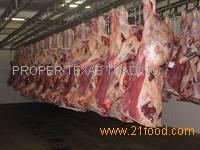 Premium Quality Halal Frozen Boneless Beef/Buffalo Meat