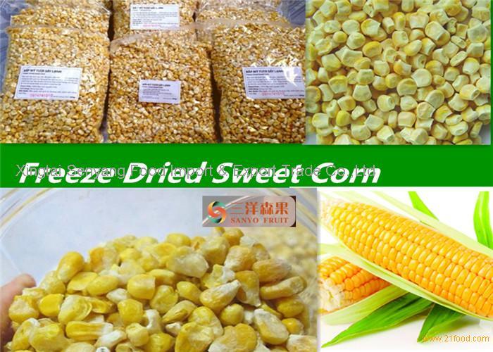 Organic Freeze Dried Sweet Corn Organic vegetable