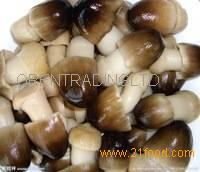 Canned Whole White Mushroom