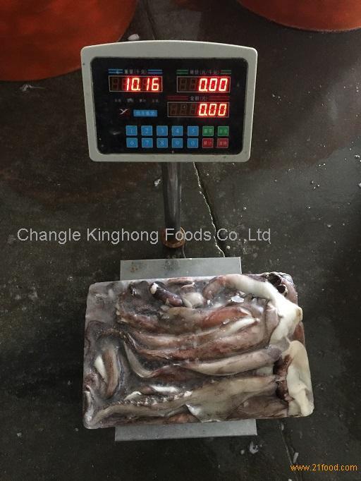Frozen Squid Tentacle