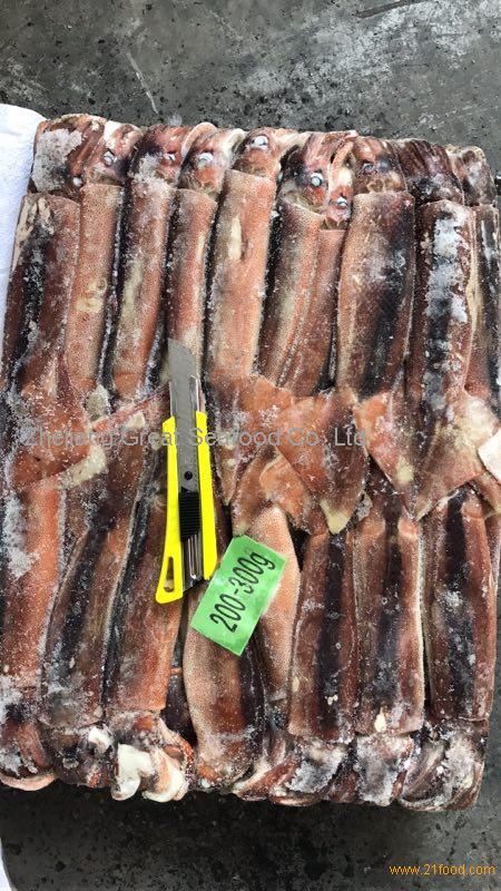 Seafrozen Illex Squid WR(Illex Argentinus)