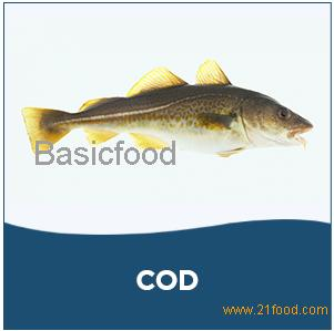 COD,frozen mackerel fish, frozen horse mackerel fish, frozen hake fish, frozen red seabream fish, fr