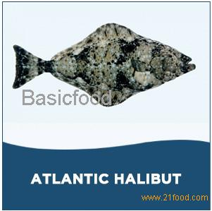 Atlantic Halibut,COD,frozen mackerel fish, frozen
