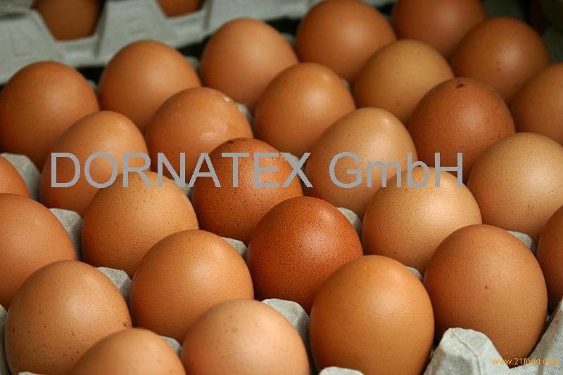 Fresh white shell chicken table eggs
