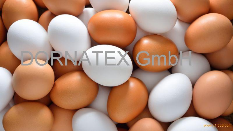 selll Fresh White and brown Chicken Eggs