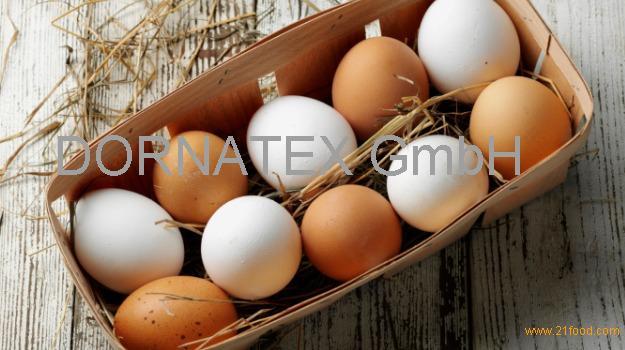 Fresh Chicken Table Eggs , Chicken Eggs price , yellow yolks white chicken eggs price in bulk