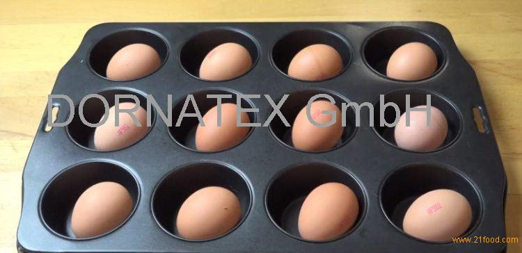 sell Fresh Chicken Table Eggs Brown