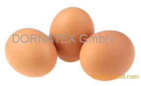 sell fresh Turkish White shell chicken eggs