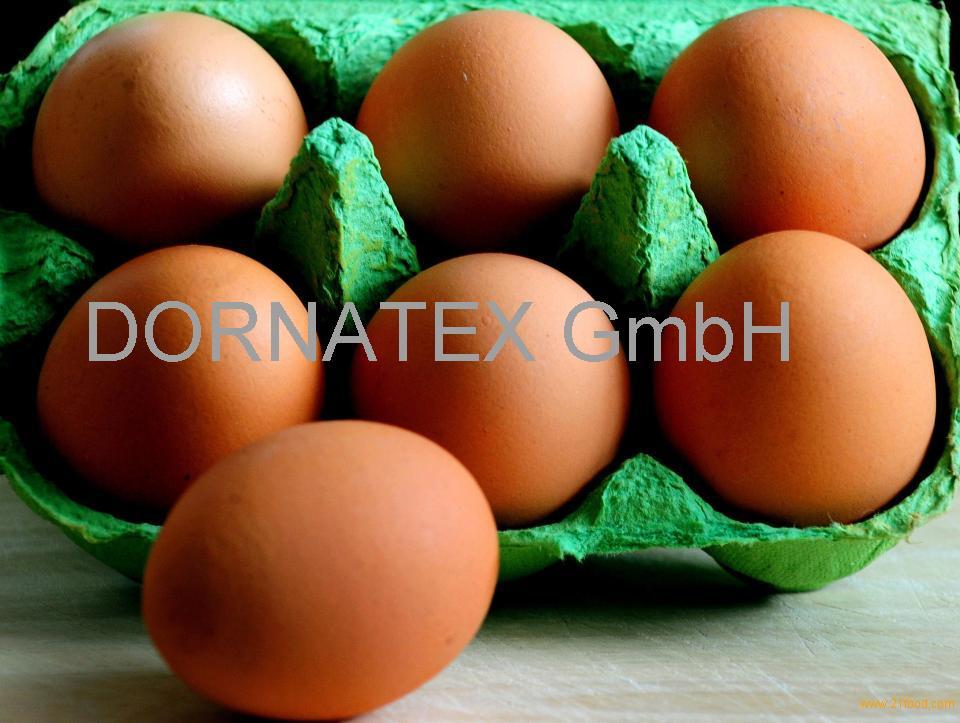 sell /buy Farm Fresh Brown Table Chicken Eggs