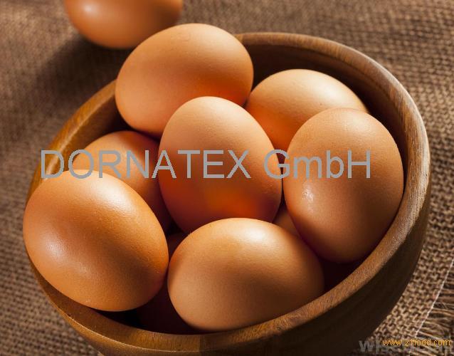sell Fresh chicken eggs in bulk Broiler Hatching Eggs,Cobb 500/ Ross 308 Grade A