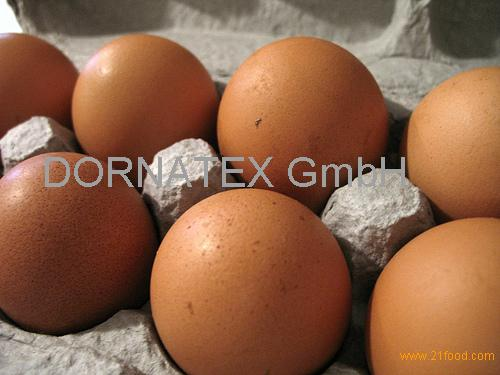 Fresh Brown Table Eggs Chicken Eggs In Bulk...