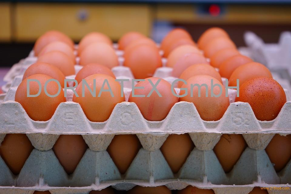 /////QUALITY Chicken Eggs AT CHEAP PRICE/ FRESH BROWN EGGS/ duck eggs