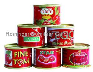 Best Grade Tomato Paste, Tomato Souce, Sachet Tomato Paste,Canned Vegetables