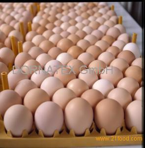 Preserved,Fresh Style and Egg Product Type farm fresh chicken eggs