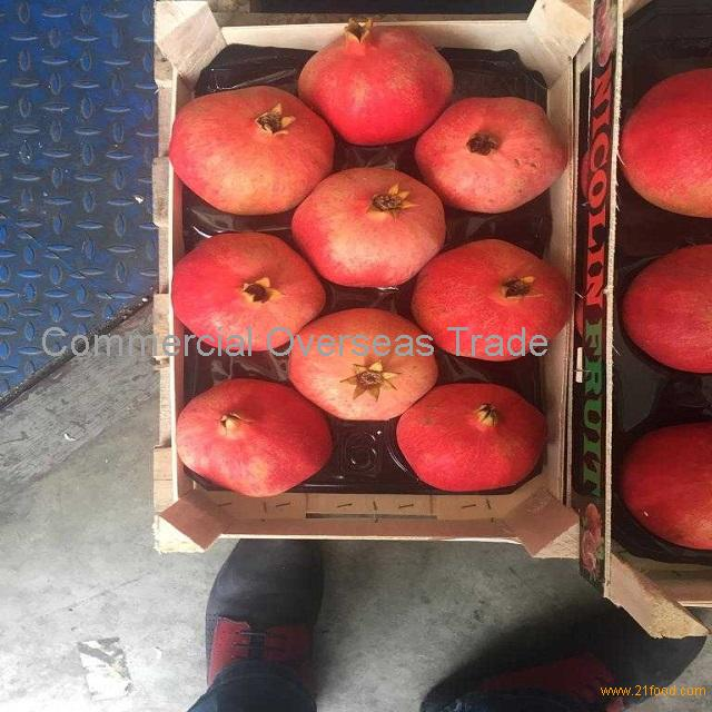 Best price fresh pomegranate with high quality