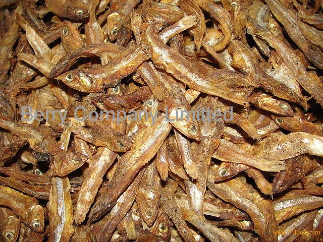 High Quality Grade A Dried StockFish / Frozen Stock Fish for sale///