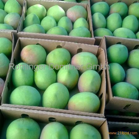 FRESH MANGO- BEST QUALITY - GOOD PRICES