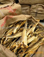 //Norwegian Grade A Dried StockFish / Frozen Stock Fish for Sale.///