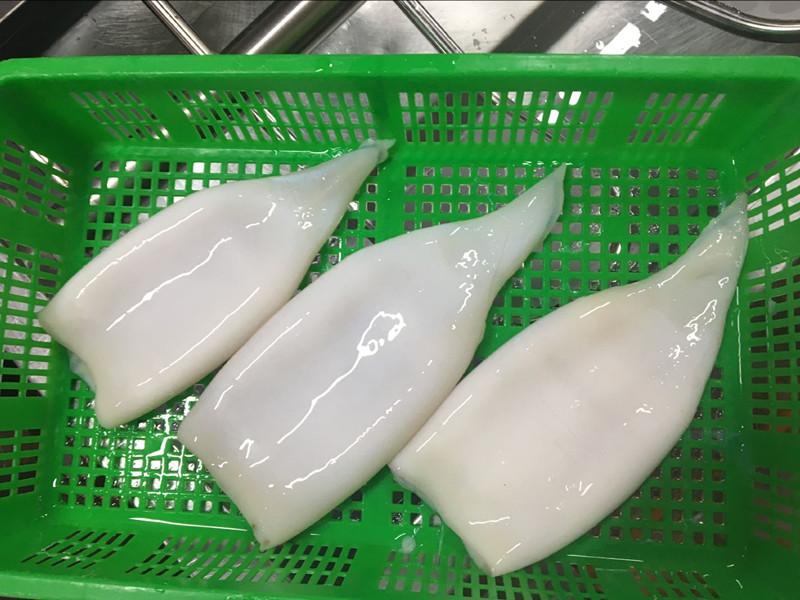Frozen Peru squid tubes skinless