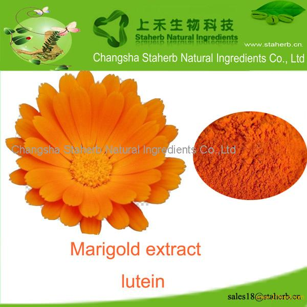 Factory supply Marigold extract,lutein,colorant